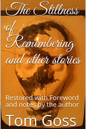 The Stillness of Remembering and Other Stories