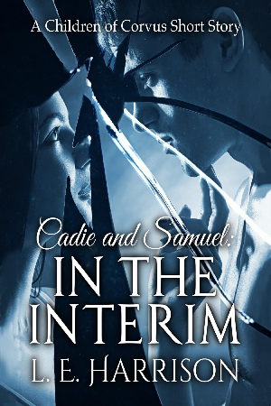 Cadie and Samuel: In the Interim